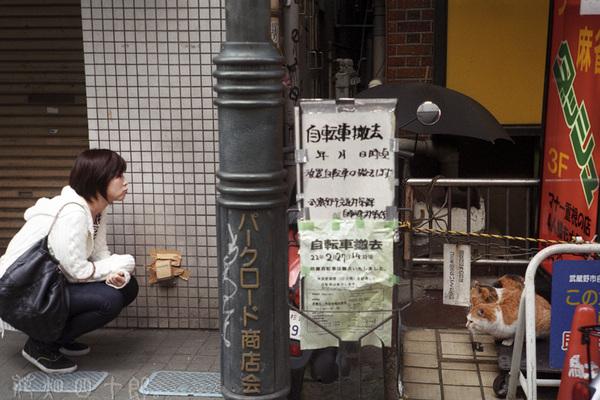 10030215zorkim_fuji100